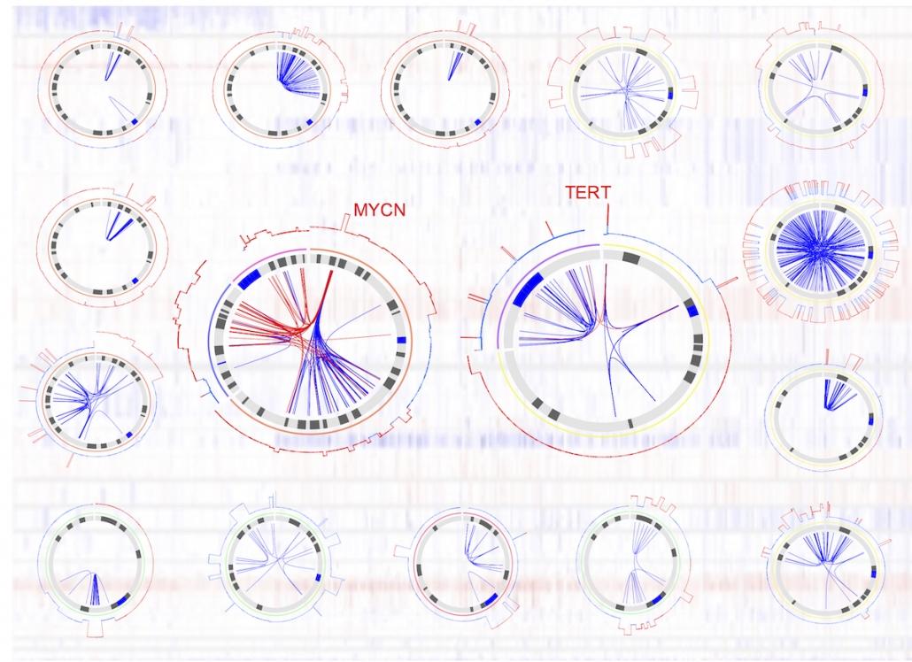 Structural Variation image
